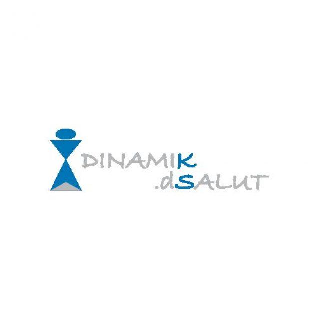 DINAMIK D SALUT