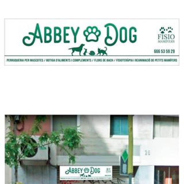 ABBEY-DOG